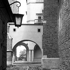 """фото """"The Krakow etudes"""""""