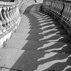 "фото ""лестница"""