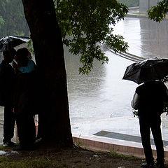 """photo """"Rain in Kiev"""""""