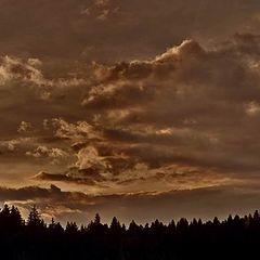 "фото ""free as a cloud"""