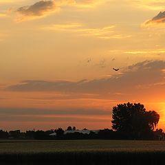"""фото """"Sunrise 19.6.2004"""""""