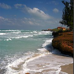 "фото ""The surf"""