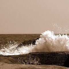 "фотоальбом ""rythm of the Pacific"""