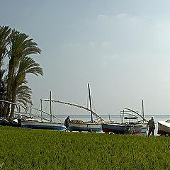 """фото """"Fishing boats 5"""""""