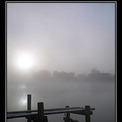 "фото ""Damp Morning"""