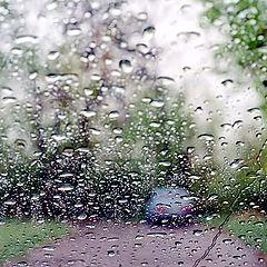 "photo ""Etude in raining wether... (1)"""