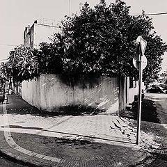 "фото ""near to the gaza street"""