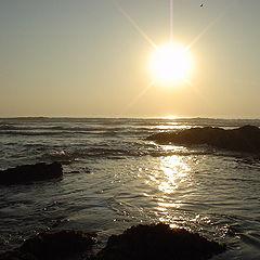 "фото ""the sunset"""