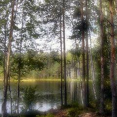 """фото """"Легенды лесного озера"""""""