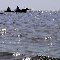 """фото """"Summer sea"""""""