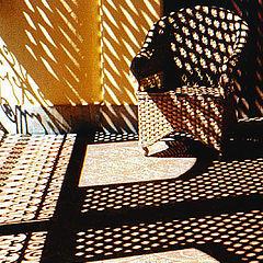 "photo ""Simply Shadows"""