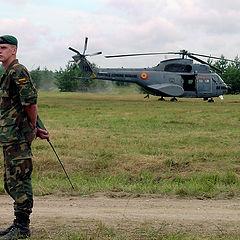 """фото """"On duty"""""""