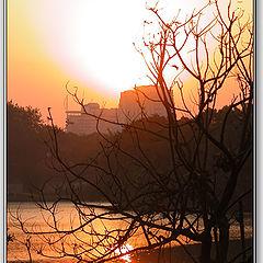 "photo ""Gold Sunset"""
