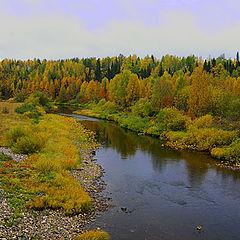 """фото """"Осень. Река."""""""