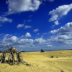 "фото ""bleu sky"""