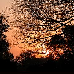 "photo ""Web Sunset"""