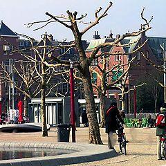 "фото ""Amsterdam"""