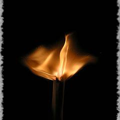 "photo ""Fire"""