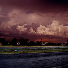 "photo ""в ожидании бури"""
