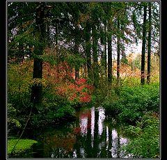 """фото """"Autumn palette #2."""""""