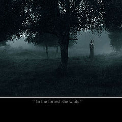"""photo """"in the forrest she waits"""""""