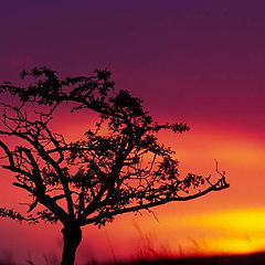 "фото ""Sunset in Vertes"""