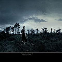 "photo ""into the light"""