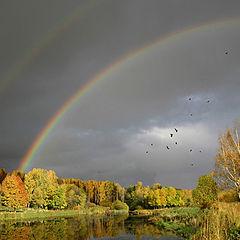 """фото """"Вдоль ручья-3 (радуга слева)"""""""