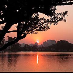 """photo """"sunset #5"""""""