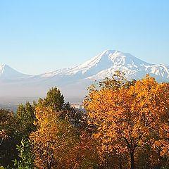 """photo """"Autumn in Ararat valley..."""""""