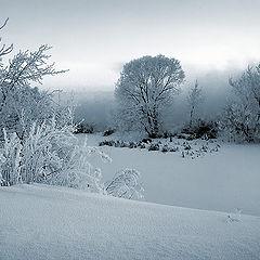 """фото """"У замёрзшей речки..."""""""