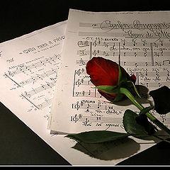 "фото ""music..."""