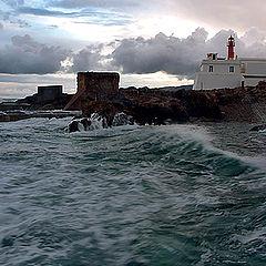 "фото ""Sea power"""