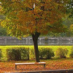 """фото """"Autumn. Lonely garden seat."""""""