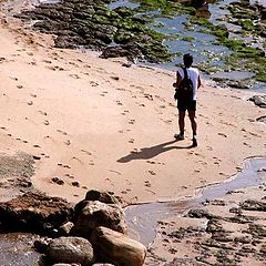 "фото ""Walking"""
