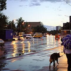 "фото ""Вечерняя прогулка после дождя"""
