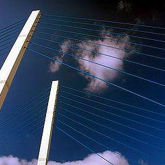 """фото """"bleu cables"""""""