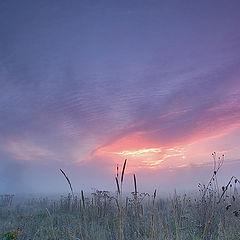 """фото """"sunrise 2"""""""