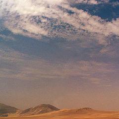 """фото """"Sand storm"""""""