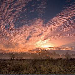 """фото """"sunrise 3"""""""