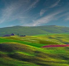 """photo """"Autunno in collina"""""""