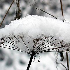 """фотоальбом """"Зима"""""""