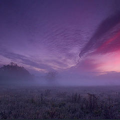 """фото """"sunrise 4"""""""