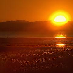 "photo ""Sunset on the Antelope Island."""