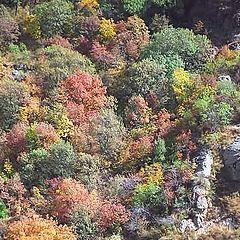 "photo ""Autumn in Gegard"""