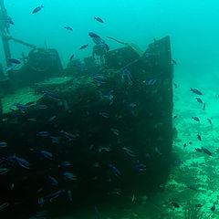 """фото """"Shipwreck #1"""""""