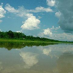 "фото ""The Amazon River"""