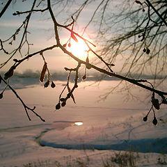 "photo ""The winter sun"""