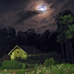 """фото """"Южная ночь"""""""