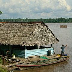 "фото ""The life on Amazon river"""